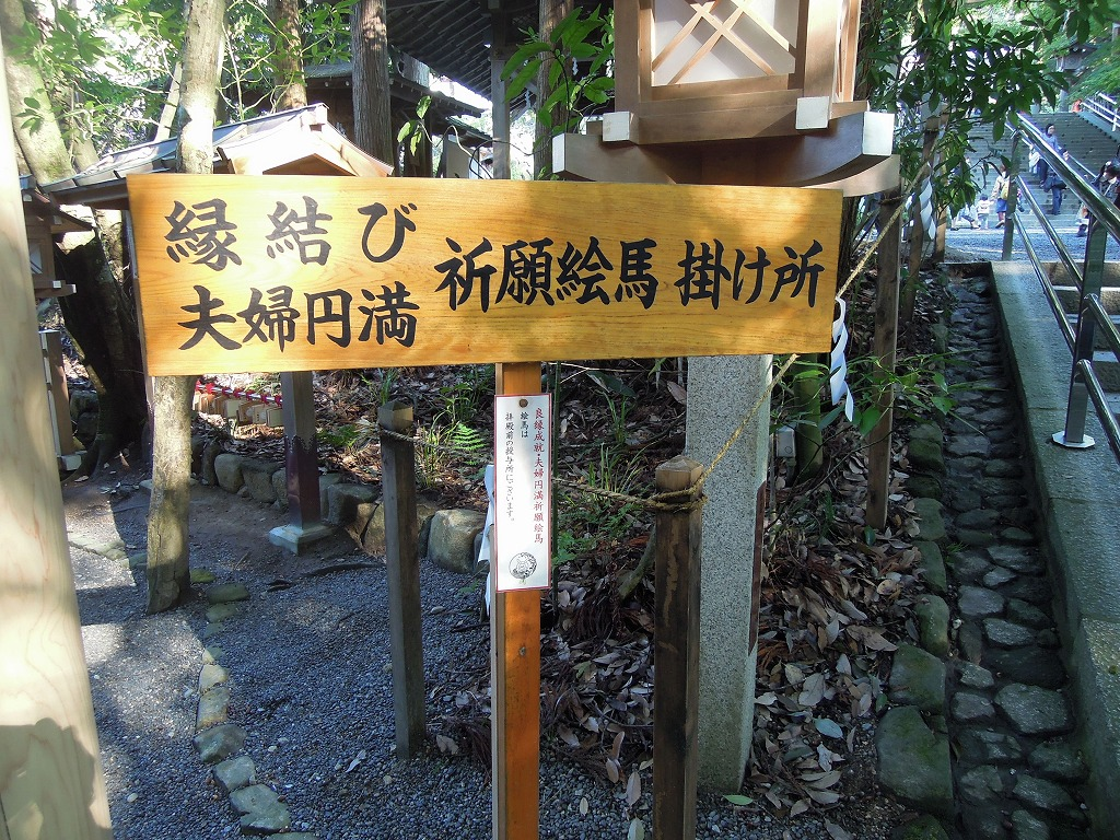 oomiwa0509