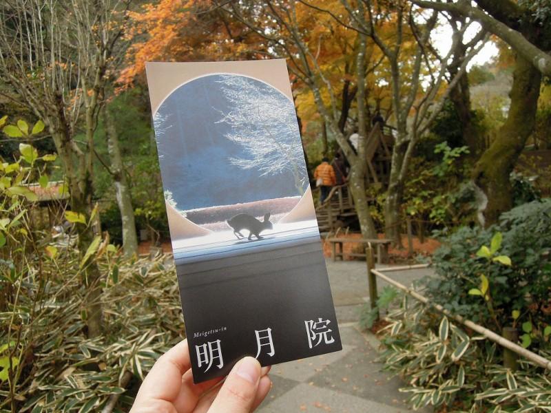 kamakura_meigetsu0104