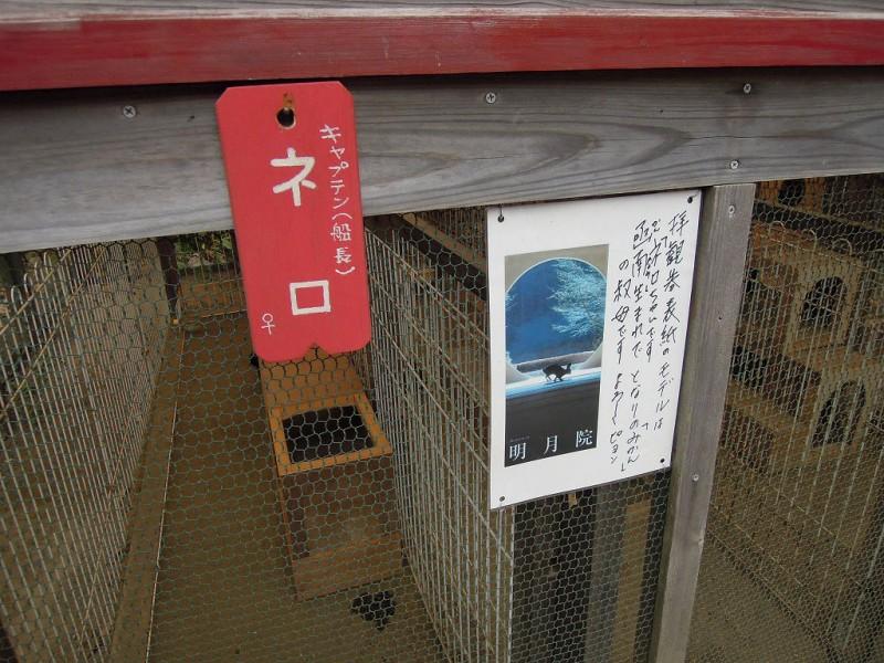 kamakura_meigetsu0505