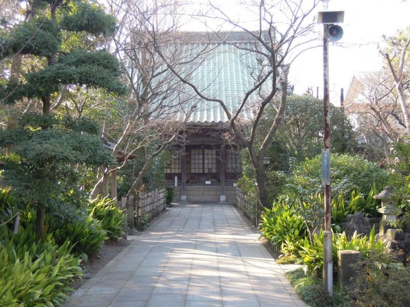 木更津 證誠寺 本堂