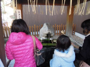 調神社 2014年 初詣 手水舎の兎