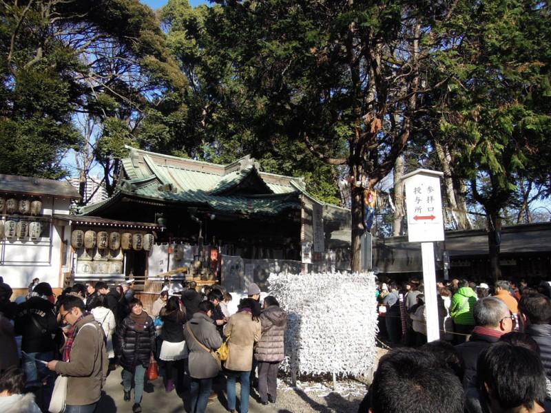 調神社 2014年 初詣 拝殿