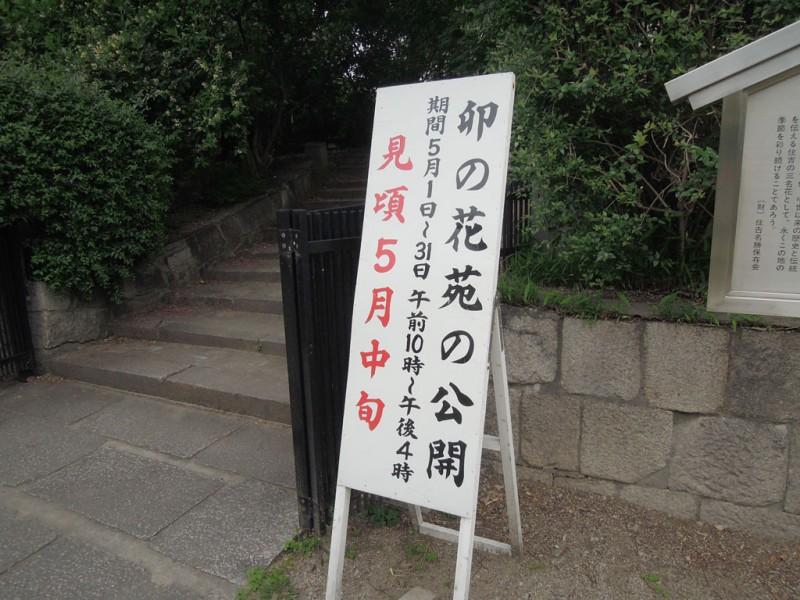 住吉大社 卯の花苑