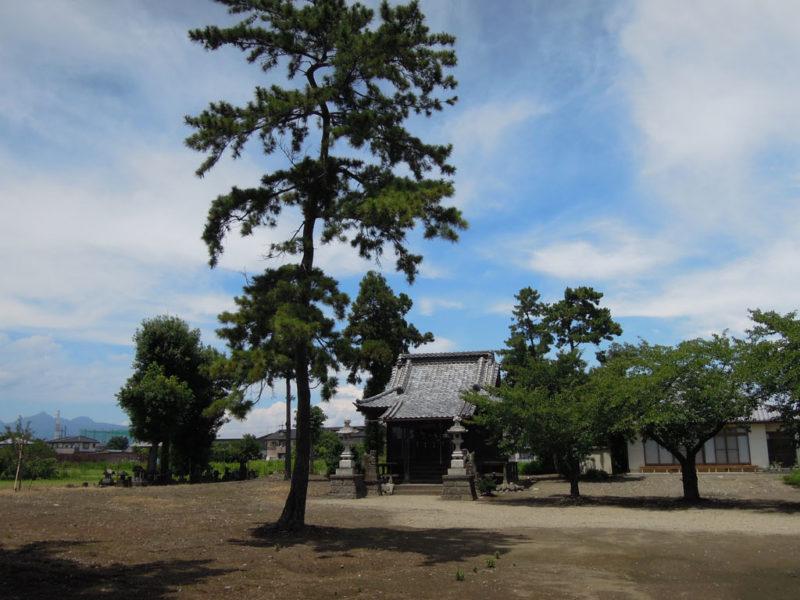 和泉神社(京目町) 境内