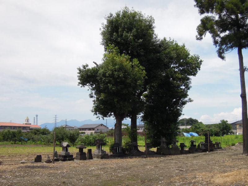 和泉神社(京目町) 石祠群