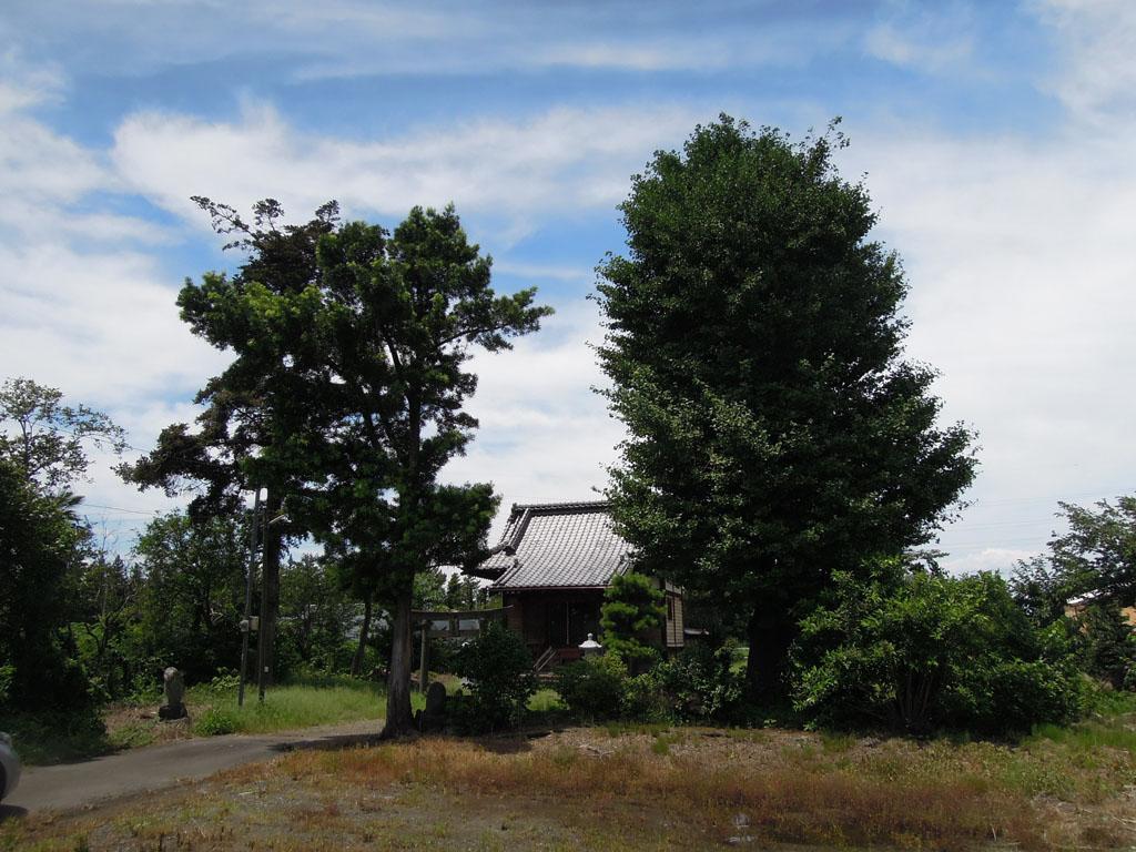 島名神社(島野町)