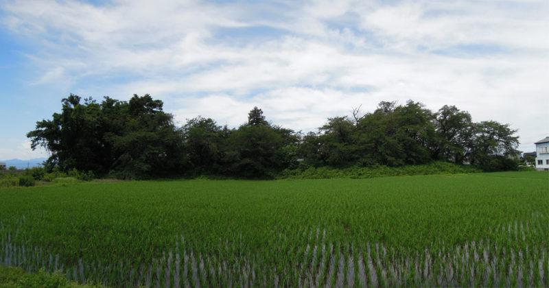 島名神社(元島名町)将軍塚古墳