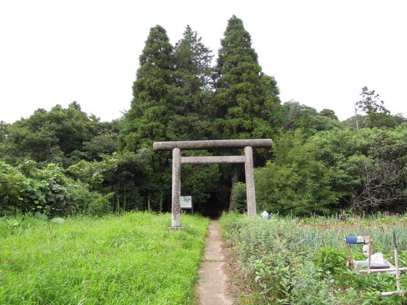 星神社(東和泉城)鳥居