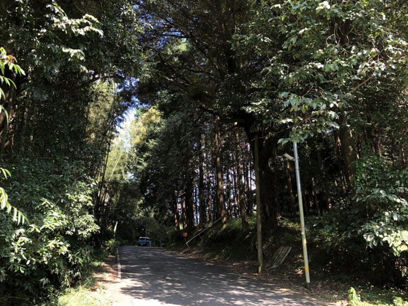 熊本 兎谷 金山彦神社前 道路